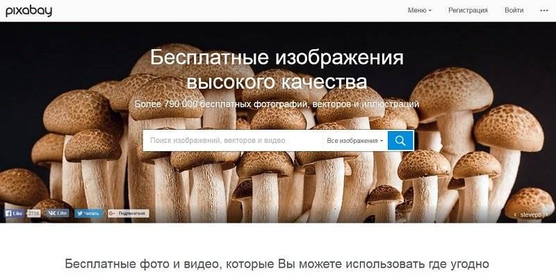 Как сделать сайт с фото - Pixabay